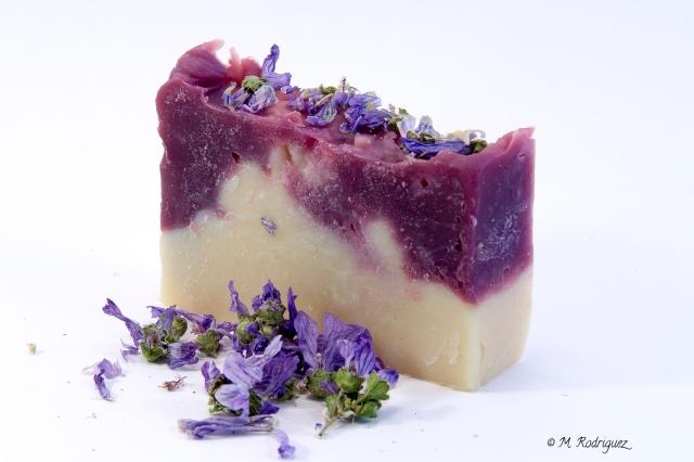 violetas2